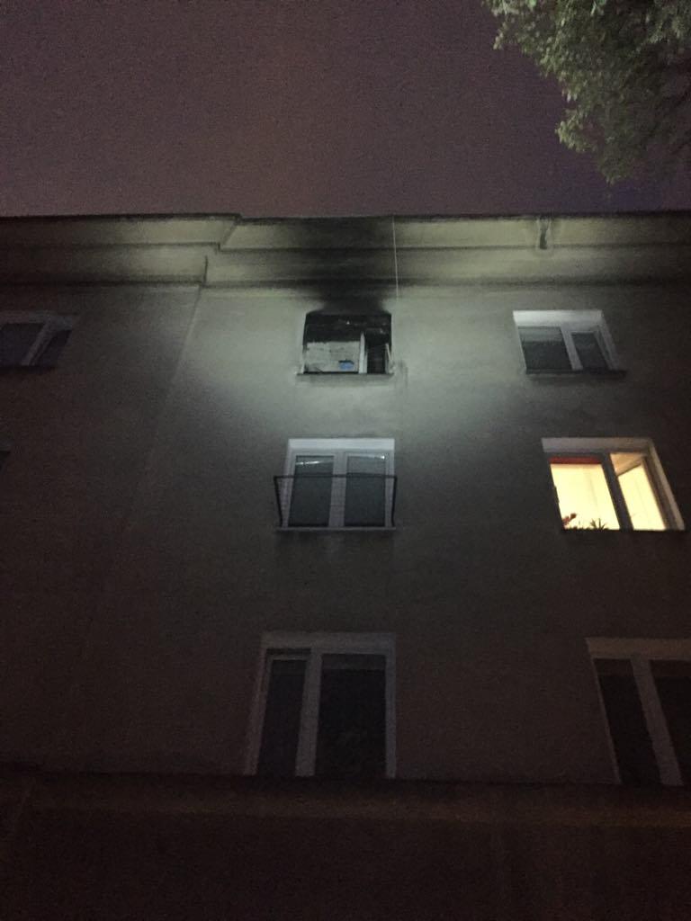 Kotka przeżyła sama dwa tygodnie w spalonym mieszkaniu!